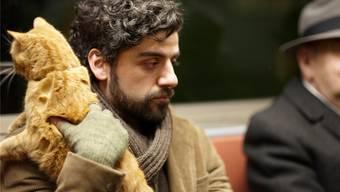 Oscar Isaac als Llewyn Davis mit seiner Katze Ulysses im Film «Inside Llewyn Davis» der Coen-Brüder. Key