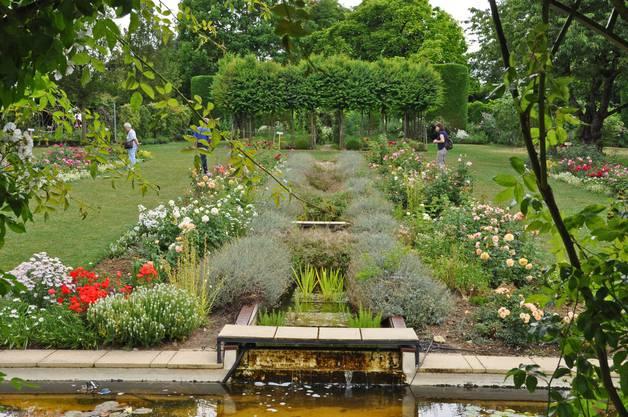 Ausschnitt aus dem Wassergarten mit Rosenrabatten.