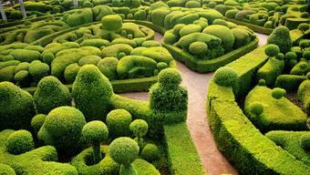 Buchsbaum, auf die Spitze getrieben: Die Gärtner von Schloss Marqueyssac in der Dordogne im Südwesten Frankreichs sind Meister der Ars topiaria, der Gartenschnittkunst.