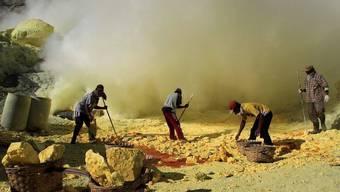 Arbeiter in indonesischer Schwefelmine (Archiv)