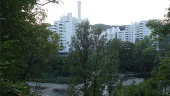 Bereits ist das steile Ufer oberhalb des Fussgängersteges zur Webermühle gerodet.