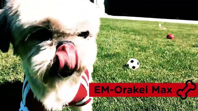 EM-Orakel: Das ist unser Max!