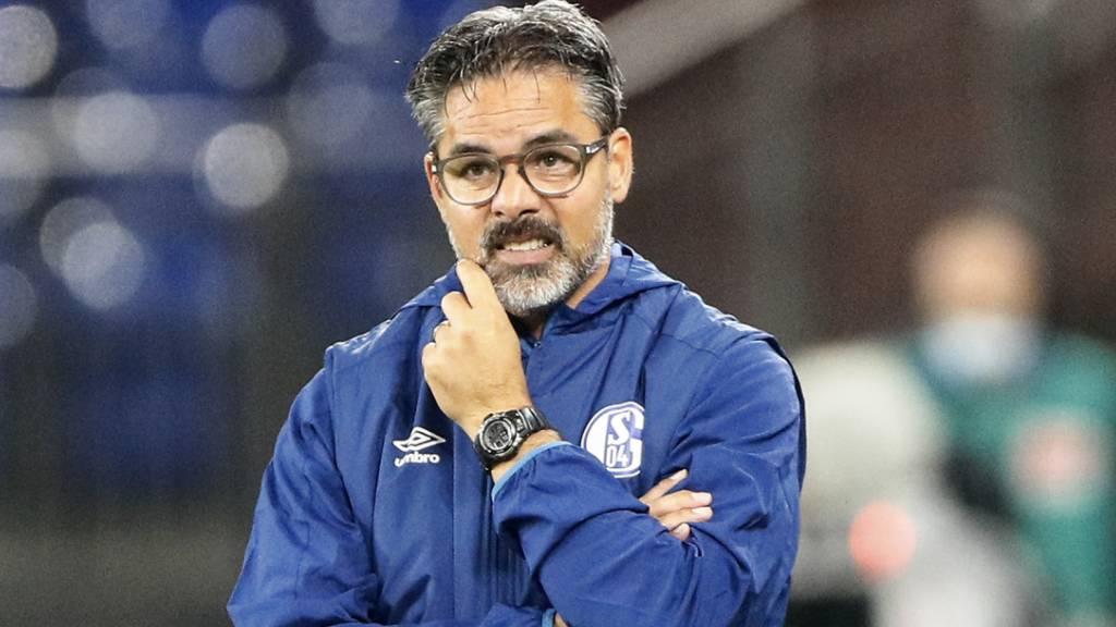 Schalke 04 stellt Trainer Wagner frei