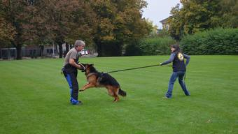 Ein Polizeihund in Aktion. (Symbolbild)