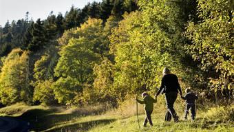 Wanderwege im Aargau: Warum in die Ferne schweifen, wenn das Schöne auch so nah liegt?