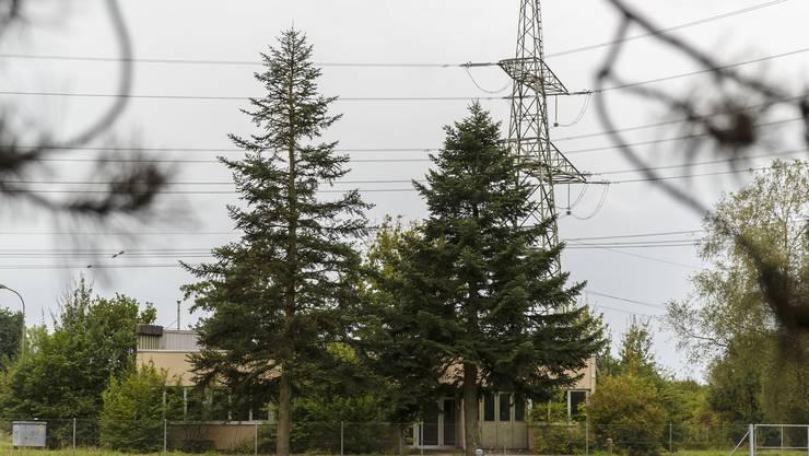 Sogar die Hochspannungsleitung entlang der Grundstückgrenze wird als Argument gegen das Bundesasylzentrum ins Feld geführt.