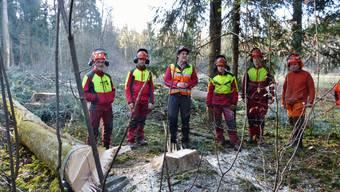 Nachdem die Lehrlinge der dritten Gruppe einen schiefen Baum erfolgreich fällten, stehen sie Rede und Antwort.