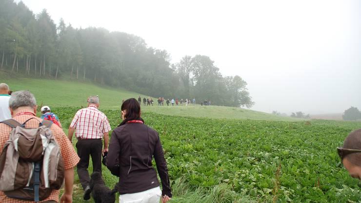 Die Herbstwanderung begann im Surbtaler Nebel