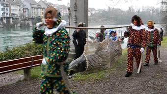 Die Narronen der Narro-Alt-Fischerzunft 1386 Laufenburg bringen ihren Fang ins Städtle.