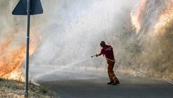 Aufgrund von Waldbränden mussten in Süditalien - wie in San Pietro nahe Cosenza - zahlreiche Touristen in Sicherheit gebracht werden.