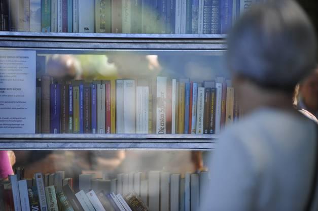 Glastüren schützen die Bücher