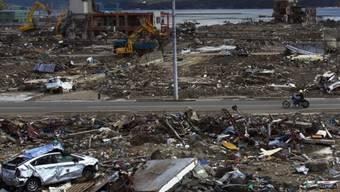 Verwüstung nach dem Tsunami vor Japan: Nun treiben Wrackteile vor den Küsten der USA und Kanadas (Symbolbild)