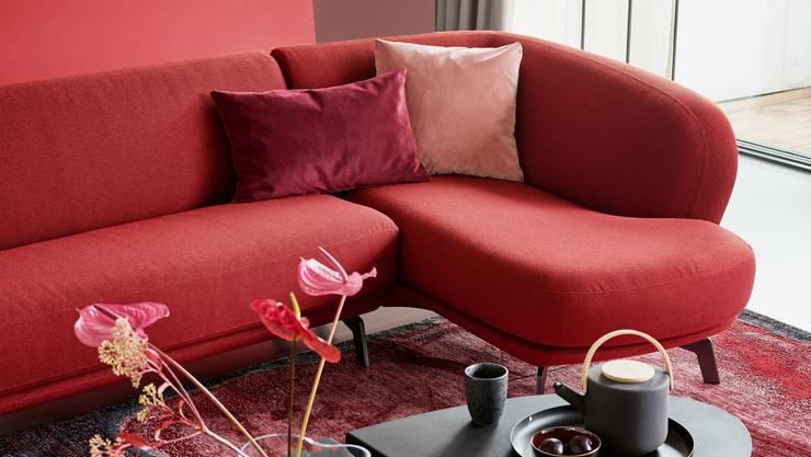 Sofa Flint von Pfister