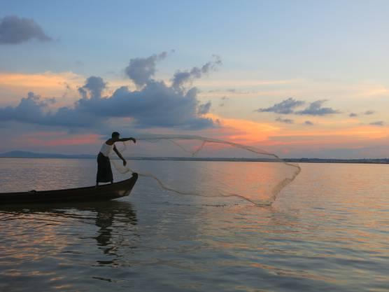 In der Abenddämmerung nimmt der Appetit der Irawadi-Delfine zu. Fischer Maung Lay wirft sein Netz an jene Stelle, die ihm ein Delfin angezeigt hat.