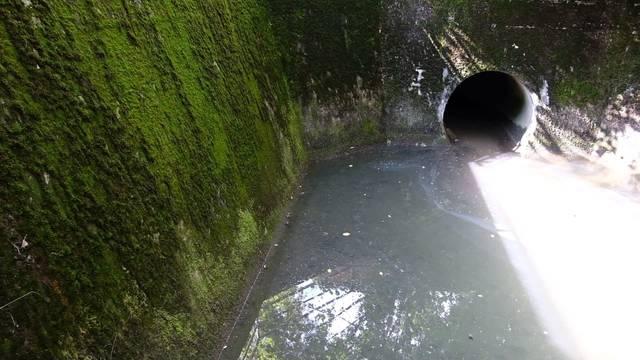 Bereits die dritte Verschmutzung im Länggenbach