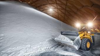 Die beiden Saldome haben eine Lagerkapazität von rund 250000 Tonnen Salz.