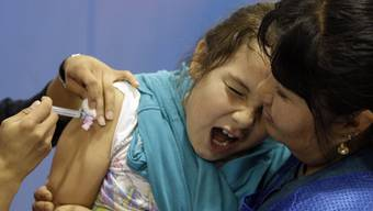 Die Schweinegrippe-Epidemie ist in Spanien wieder ausgebrochen (Archivbild).