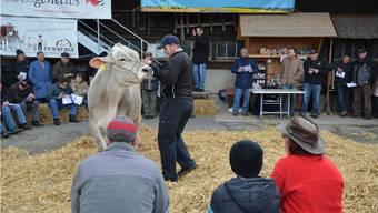 Das Interesse an der Braunviehauktion war auch dieses Jahr gross; alle Tiere konnten verkauft werden. ES