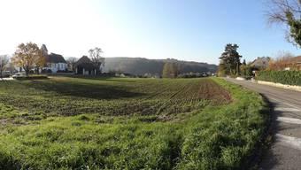 40 der rund 100 Aren Land bei der christkatholischen Kirche in Magden sollen gemäss revidierter Nutzungsplanung überbaut werden können. - Quelle: Walter Christen