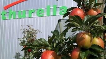 Äpfel reifen vor dem Logo der Firma Thurella (Archiv)