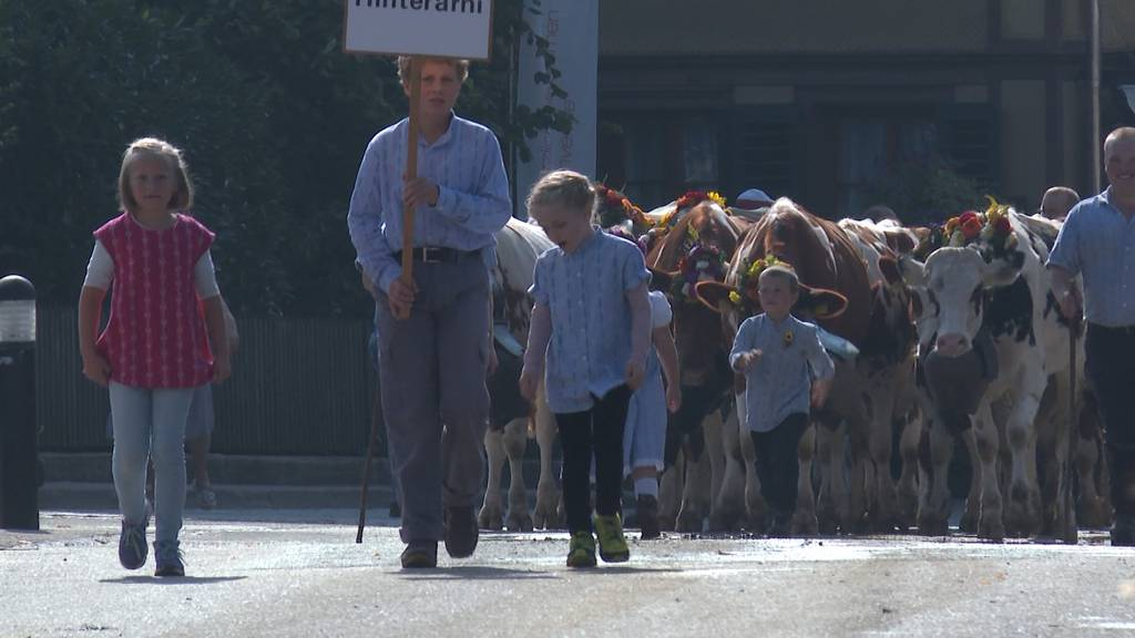 Traditioneller Alpabzug trotzt dem Coronavirus