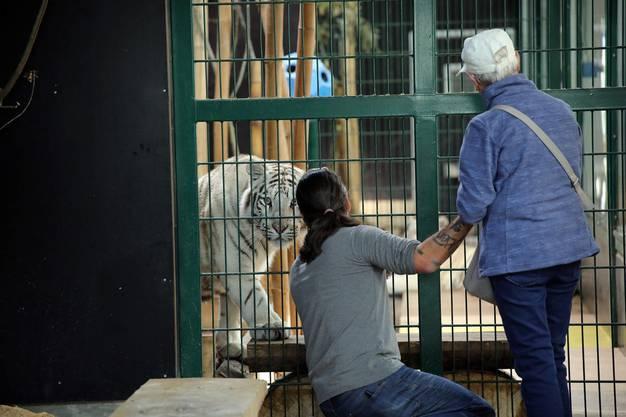 Abwechslung und Kontakte sind für Tiere wie Menschen wichtig: Diese Philosophie lebt der Sikypark.