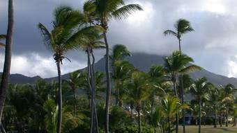 Gehört sie auch zu den chinesischen Schatzinseln? Die Karibik-Insel Nevis.