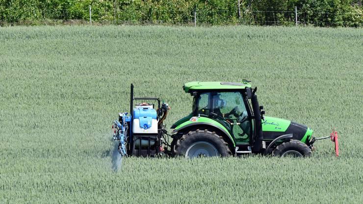 Der Einsatz von Pestiziden ist laut dem Bundesrat in der Schweiz bereits deutlich gesunken. (Symbolbild)