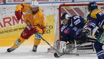 Ambris nomineller Goalie Nummer eins, Sandro Zurkirchen, überzeugte auch gegen die SCL Tigers (Dostoinow, l.) nicht.