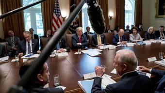 Sitzt der anonyme Autor des «New York Times»-Artikels gar an Trumps Kabinettstisch?