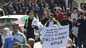 Am vierten Freitag in Folge gehen die Massenprotesten gegen die Regierung in Algerien weiter.