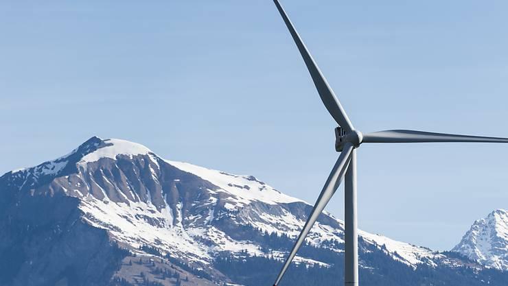 Gegen Windenergieanlagen gibt es oft Widerstand, auch von Umweltverbänden. Die Vereinigung zur Förderung der Windenergie hat dafür kein Verständnis.