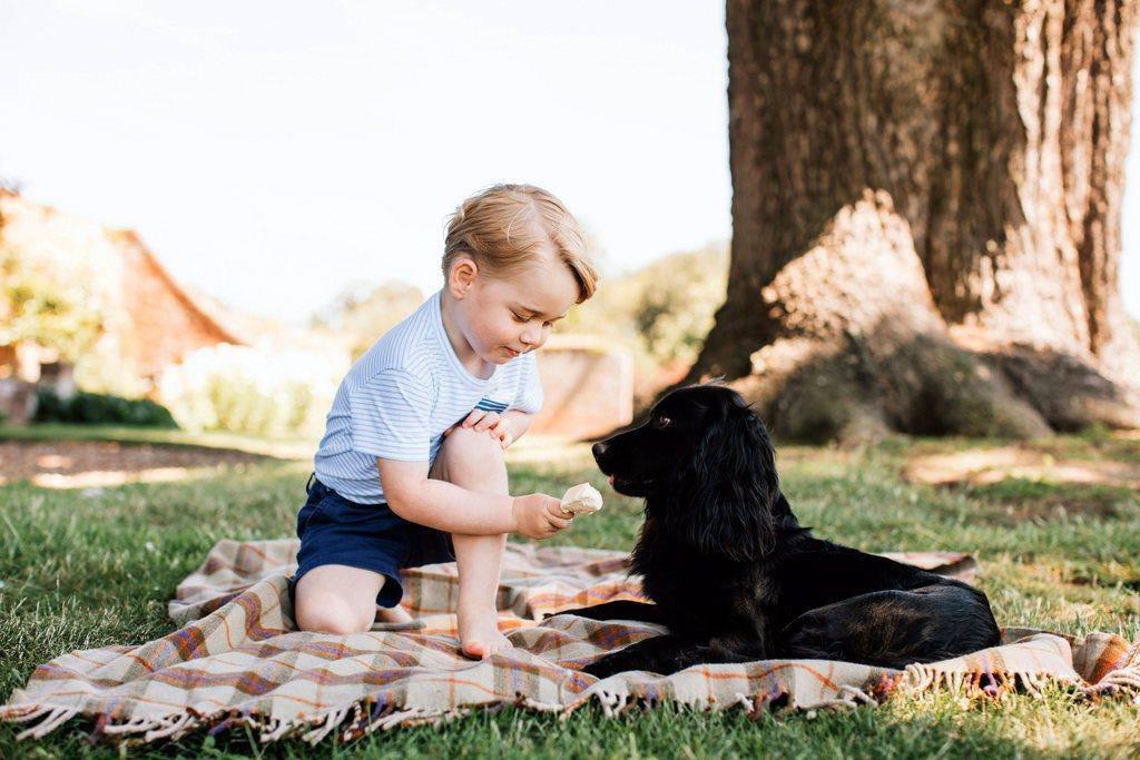 Prinz George erobert die Herzen