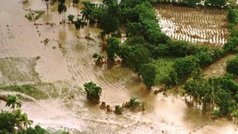 Naturkatastrophen werden in Zukunft weiter zunehmen (Archiv)