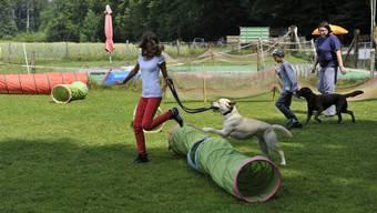Hunde-Ferienplausch