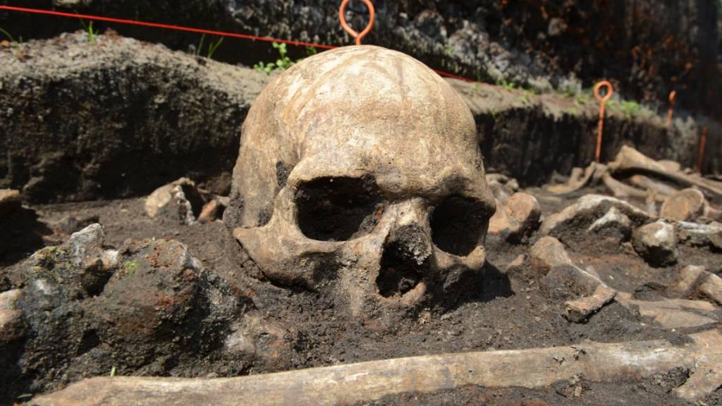 Mitteleuropäer waren in Bronzezeit noch keine Milchtrinker
