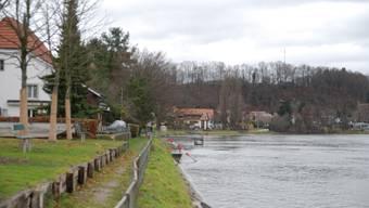Die Idylle am Rheinufer soll nicht durch Bootssteg gestört werden.  sh