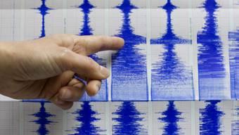 Ein Erdbeben der Stärke 7,7 hat die Karibik erschüttert. Eine zunächst ausgesprochene Tsunami--Warnung konnte wenig später wieder aufgehoben werden. (Symbolbild)