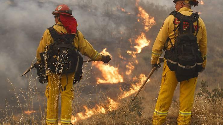 """Die Feuerwehr bekämpft das """"Sand Fire"""" nördlich von Los Angeles. Der Brand hat sich über eine Fläche von mehr als 13'000 Hektar Land ausgebreitet."""
