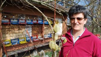 Die Salweide vor dem Bienenhaus von Hedy Imbach blüht – ein Festmahl für ihre Bienenvölker.  ES