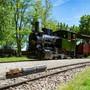 An der internationalen Modellbahnausstellung Grossbahnfest veranstaltet der Verein Schinznacher Baumschulbahn SchBB seinen traditionellen Mehrzugbetrieb mit verschiedenen Dampflokomotiven. zvg