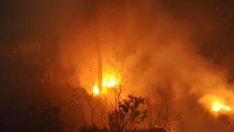 Waldbrand in Gempen