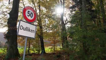 Geht es nach einer Mehrheit der Dulliker Ortsbürger, so wird die Bewirtschaftung ihres Waldes weiterhin durch den Forstbetrieb Werderamt vorgenommen.