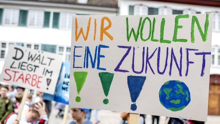 Die Sechstklässler brachten eigene Plakate an die Demo.