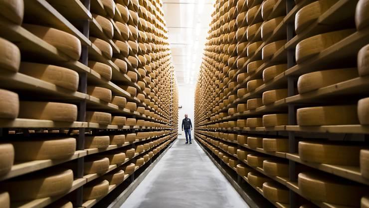 Er findet seit zehn Jahren zunehmenden Absatz: Schweizer Käse, hier Greyerzer in einem Keller in Charmey FR. (Archivbild)