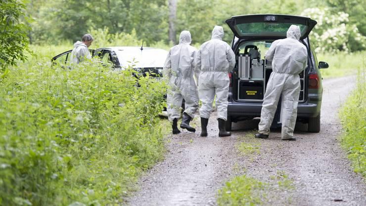 Im Wald von Fislisbach AG ist am Dienstagabend ein 18-jähriger Schweizer umgebracht worden. – Das Bild zeigt die Spurensicherung bei der Arbeit am Mittwochmorgen.