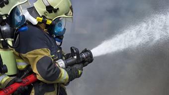 Die Feuerwehrleute brachten den Brand bei Bellinzona am frühen Morgen unter Kontrolle. (Symbolbild)