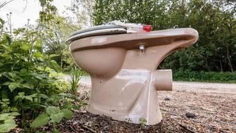 So wird es sicher nicht aussehen, das Weltraumklo, für das die Nasa einen Wettbewerb ausgeschrieben hat. Eine der Anforderungen: Man muss sich auch in der Schwerelosigkeit in die WC-Schüssel erbrechen können, ohne dass einem der Schlamassel um die Ohren fliegt. (Symbolbild)