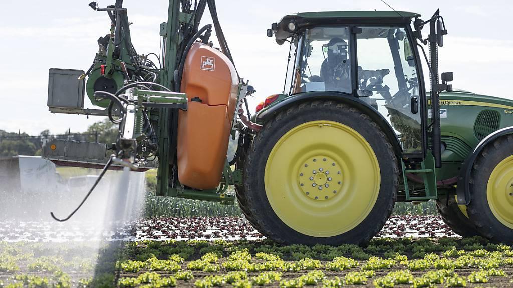 Hochrechnung: Stimmende lehnen Pestizidinitiative mit 61 Prozent ab