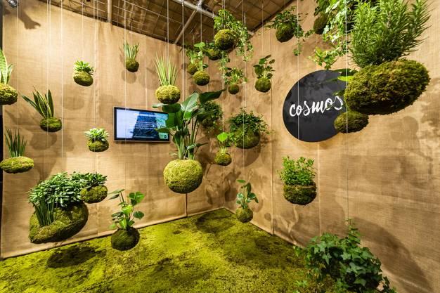 Die Digitalisierung des Gartens ist ein grosses Thema. Bewässerung, Licht, Alarmanlage, alles lässt sich steuern. The Visionaries – ein Verein mit 14 Unternehmen – zeigen, was möglich ist.